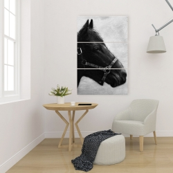 Canvas 24 x 36 - Gallopin the horse