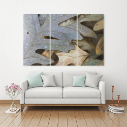 Canvas 40 x 60 - Autumn leaves