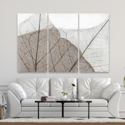 Canvas 40 x 60 - Translucent dried leaves