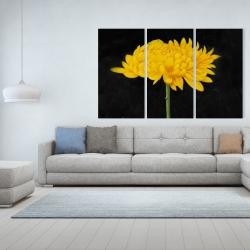 Canvas 40 x 60 - Chrysanthemum