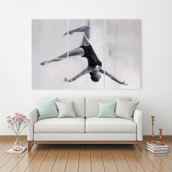 Canvas 40 x 60 - Dancer on aerial silks