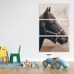 Canvas 40 x 60 - Gallopin the brown horse