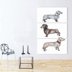 Canvas 40 x 60 - Dachshund dogs