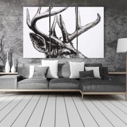 Canvas 40 x 60 - Roe deer plume