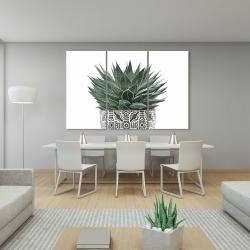 Canvas 40 x 60 - Zebra plant succulent