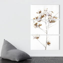 Canvas 40 x 60 - Cotton flowers branch