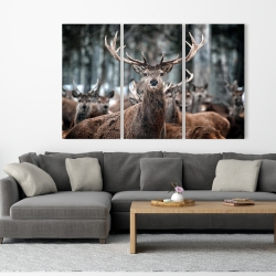 Canvas 40 x 60 - Stags
