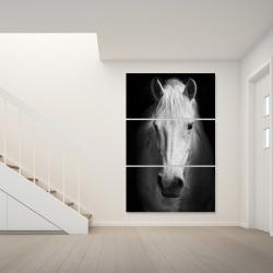 Canvas 40 x 60 - Monochrome horse