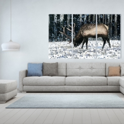 Canvas 40 x 60 - Caribou in the winter forest