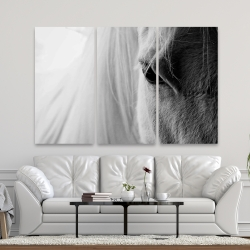 Canvas 40 x 60 - The white horse eye