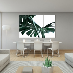 Canvas 40 x 60 - Monstera deliciosa