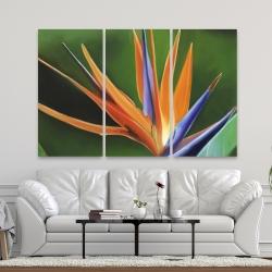 Canvas 40 x 60 - Bird of paradise flower