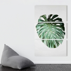 Canvas 40 x 60 - Monstera leaf