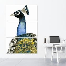 Canvas 40 x 60 - Watercolor peacock