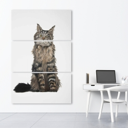Canvas 40 x 60 - Maine coon cat