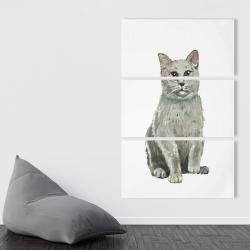 Canvas 40 x 60 - British shorthair cat