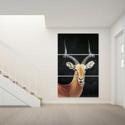 Canvas 40 x 60 - Antelope