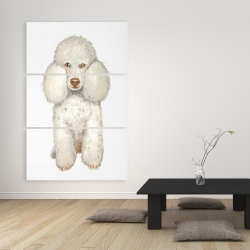Canvas 40 x 60 - French poodle
