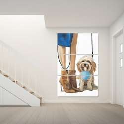 Canvas 40 x 60 - Fashionable cavoodle dog