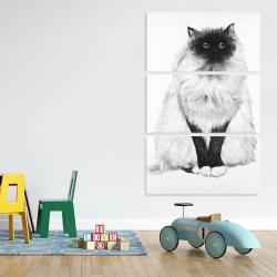 Canvas 40 x 60 - Blue eyes fluffy siamese cat