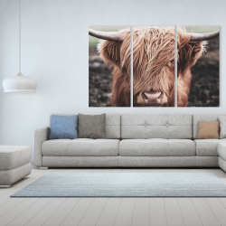 Canvas 40 x 60 - Desaturated highland cow