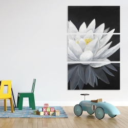 Canvas 40 x 60 - Lotus flower with reflection