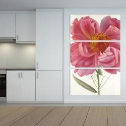 Canvas 40 x 60 - Pink peony flower