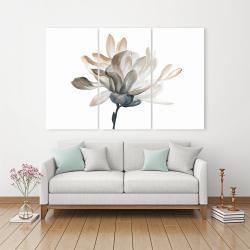 Canvas 40 x 60 - Softness