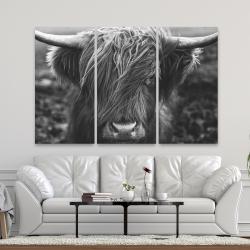 Canvas 40 x 60 - Monochrome portrait highland cow