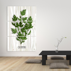Canvas 40 x 60 - Cilantro on wood