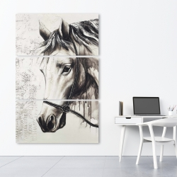 Canvas 40 x 60 - Alpha the white horse