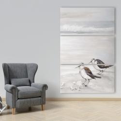 Canvas 40 x 60 - Two sandpipiers birds
