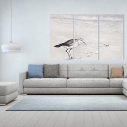 Canvas 40 x 60 - Semipalmated sandpiper
