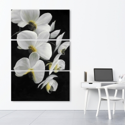 Canvas 40 x 60 - Beautiful orchids