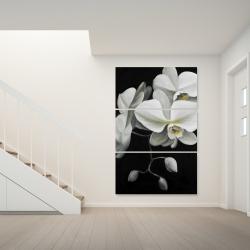 Canvas 40 x 60 - White orchids