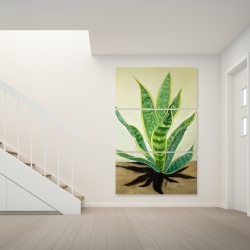 Canvas 40 x 60 - Succulent plant mother-in-law's tongue