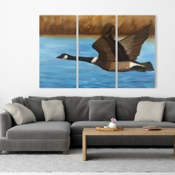 Canvas 40 x 60 - Canada goose