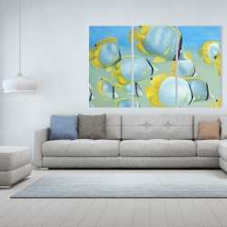 Canvas 40 x 60 - Butterfly fishes