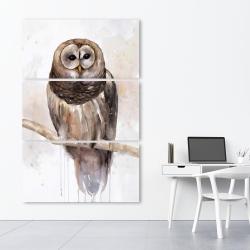 Canvas 40 x 60 - Barred owl