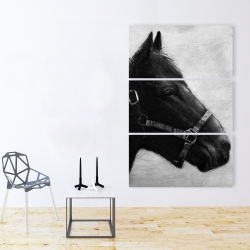 Canvas 40 x 60 - Gallopin the horse
