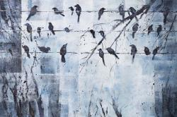 Abstract birds on electric wire