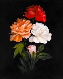 Three beautiful rose flowers