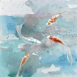 Koi fish in blue water