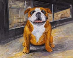 Smiling bulldog