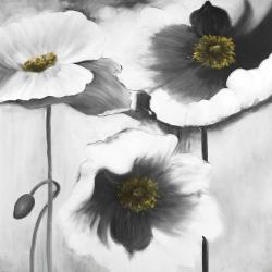 Fleurs en noir et black
