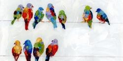 Colorful birds on a wire