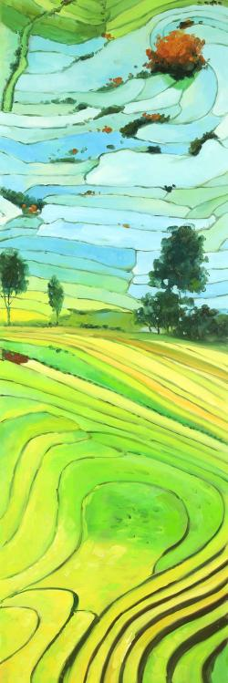 Rice fields of vietnam