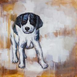 Curious puppy dog