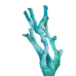 Small watercolor sea coral