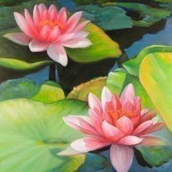 Nénuphars et fleurs de lotus